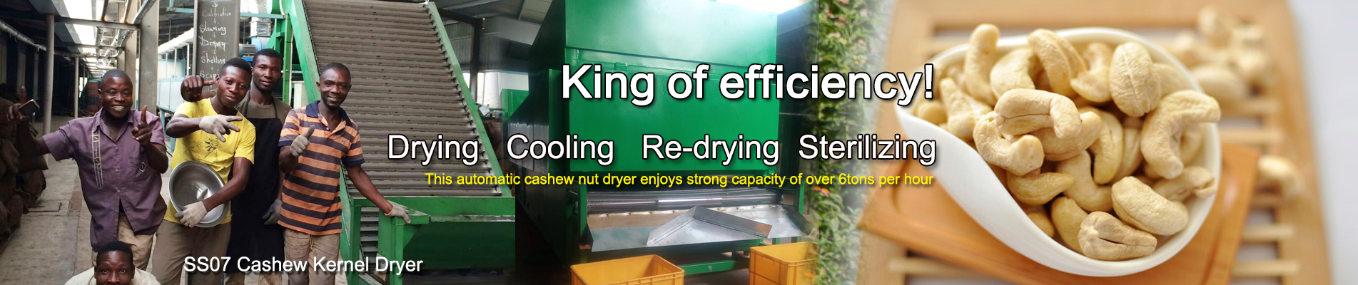 Automatic Cashew Nut Dryer Machine